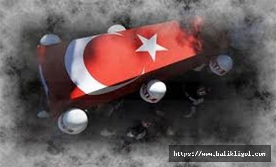 Suruç'tan Şehit Haberi Geldi: 2 Şehit 3 Yaralı