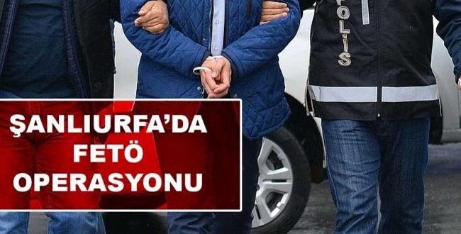Urfa'da FETÖ Operasyonu: Aralarında Profesör ve Poliste Var