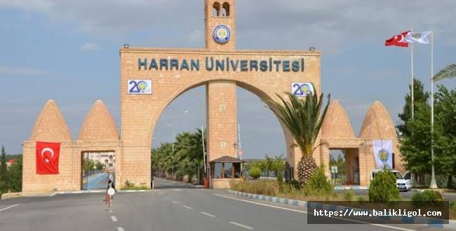 Kar yağışı nedeni ile Harran Üniversitesi eğitimi ara verdi.