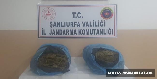 Suriye'den Uyuşturucu PKK'lı Şahıssa Operasyon: 21 KĞ Esrar Yakalandı