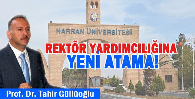 Üniversite'de Tecrübeli Rektör Yardımcısı Atandı