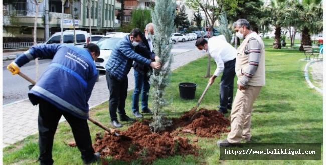 Yeşil Urfa Çalışmaları Haliliye'de Devam Ediyor