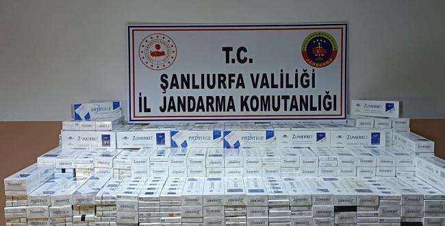 Dev Kaçak Sigara Operasyonu! Binlerce Paket Sigara Ele Geçirildi