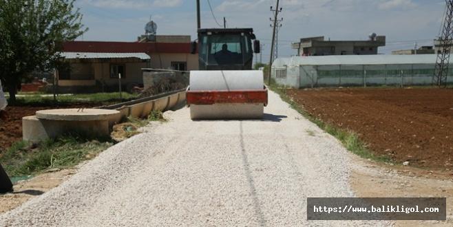 Eyyübiye İlçesi Sağlık mahallesinde yol çalışmaları