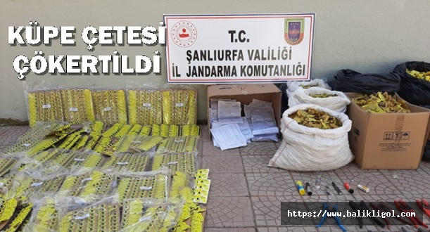 Siverekte Sahtecilere Operasyon 14'ü Veteriner 17 Kişi Gözaltına Alındı