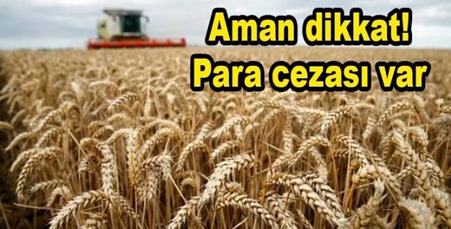 Tarım Müdürlüğünden Önemli Uyarı! Cezai İşlem Uygulanacak