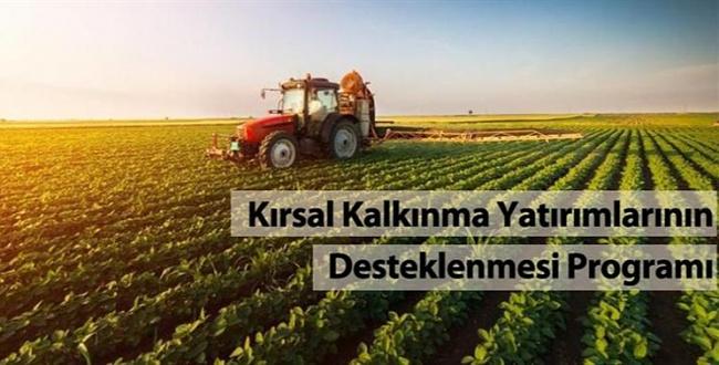 Erdoğan'ın İmzasıyla Yayınlandı! Kırsala Yönelik Destekleme kararı