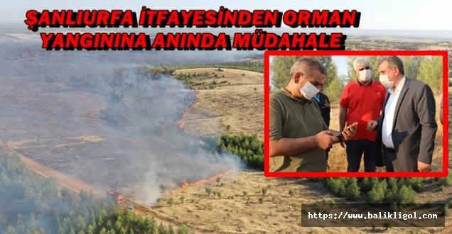 Osmanbey Kampüsündeki Yangına Uaçklarla Müdahale Edildi