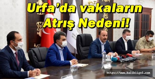 Sağlık Müdürü Erkuş, Urfa'daki Toplu Etkinliklere Dikkat Çekti