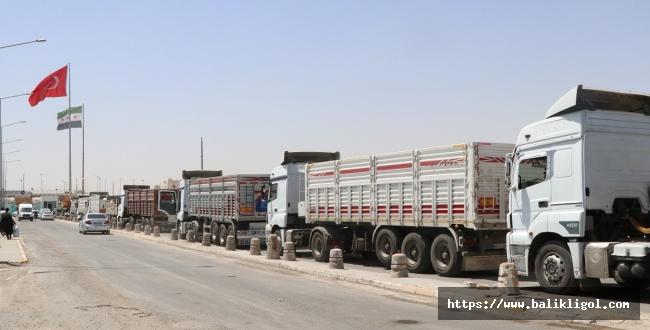 Telabyad'dan kamyon ve tır yükü ile Urfa'ya getiriyorlar