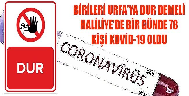 Urfa'da koronavirüste adeta patladı, Sadece Haliliye'de bir günde 78 kişi