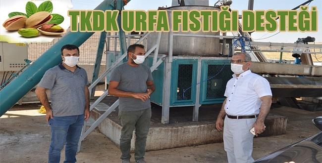 TKDK'dan Urfa fıstığına tam tesdek