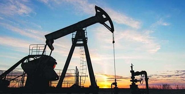 TPAO Şanlıurfa dahil 5 ilde petrol arayacak!