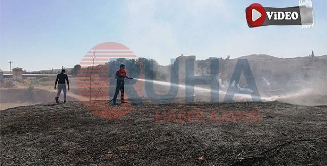 Şanlıurfa'da yediemin otoparkında yangın