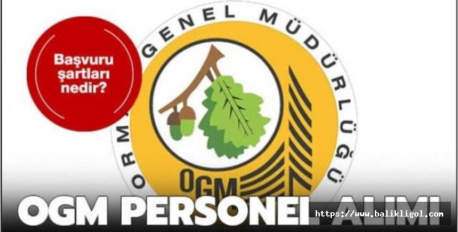 Orman Müdürlüğü KPSS Puanı ile Sözleşmeli Personel Alacak