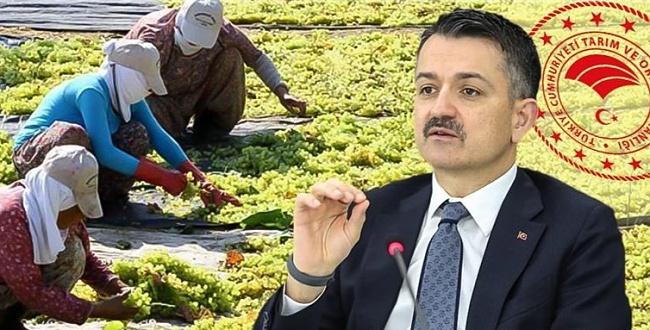 Tarım ve Orman Bakanlığı işçi alımı yapacak