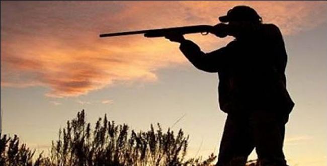 Şanlıurfa'da ceylan avcıları suçüstü yakalandı