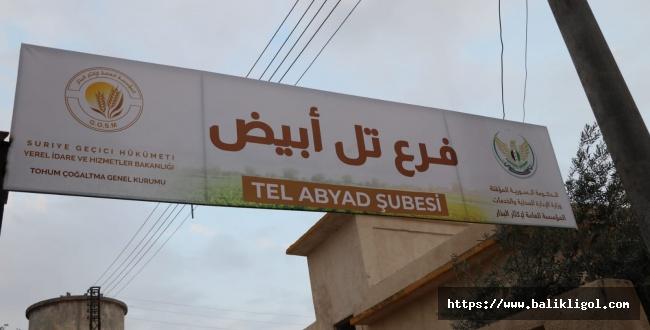 Telabyad'ta İlk Sanayi Tesisi Açıldı
