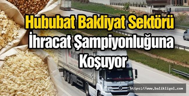 Türkiye en fazla Bisküvi-Pasta Buğday Unu, Bitkisel Yağlar ve Makarna İhraç Etti