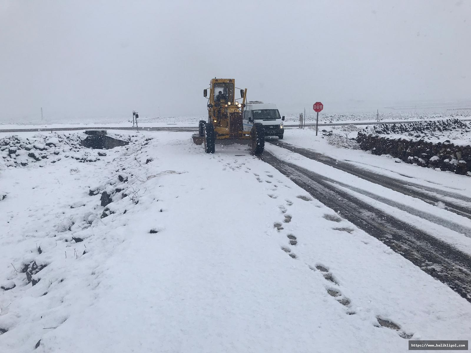 Urfa'da Kar Bastırınca yüzlerce araçla Karla Mücadele Başladı
