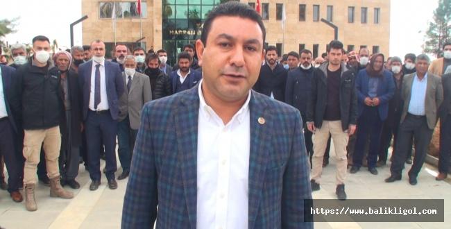 Harran'da olaylı gün, Belediye Başkanı kavganın ortasında kaldı