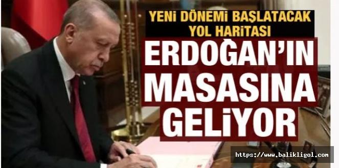 Türkiye Artık Sabredemeyecek! PKK'yı bitirecek strateji masada