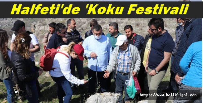 Halfeti 3. Koku Festivalinde Mezopotamya sümbülü ve meşe ağacı tanıtıldı