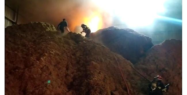 Pamuk fabrikasında yangın çıktı