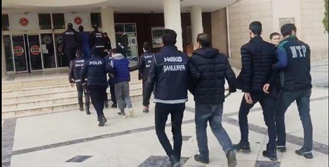 Şanlıurfa'daki uyuşturucu operasyonunda 19 tutuklama