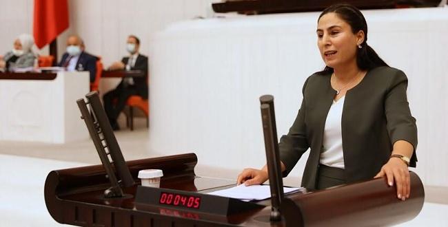 Urfa'daki intihar vakaları TBMM'ye taşındı
