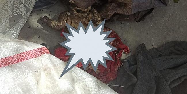 Eyyübiye'de Kan Donduran Olay: poşet içinde çürümüş bebek cesedi bulundu
