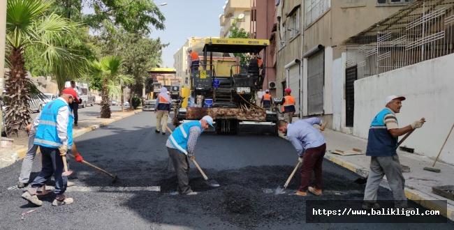 Şanlıurfa Büyükşehir Asfalt Atağını Sürdürüyor