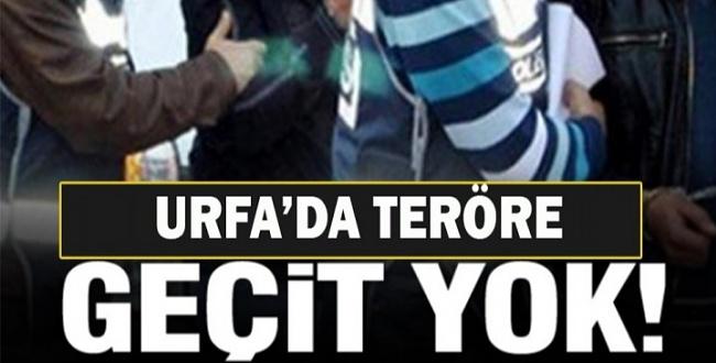 Urfa'da terör operasyonu 8 kişi gözaltına alındı