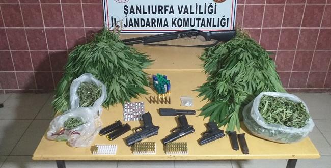 Urfa Jandarma Ekipleri uyuşturucu tacirlerine göz açtırmıyor