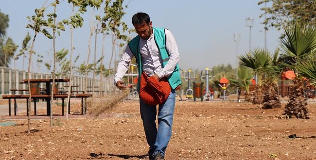 Harran Kent Parkı Büyükşehir'in Çalışmalarıyla Yemyeşil Olacak