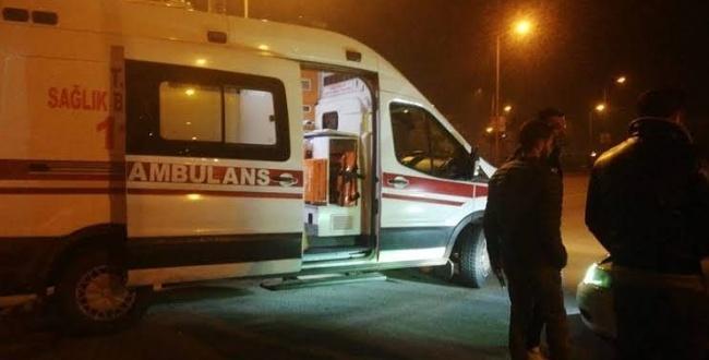 Kontrolden çıkan kamyonet devrildi: 2 yaralı