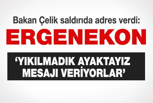 Hükümetten, AK Partiye ve Adalet Bakanlığına saldırı açıklaması