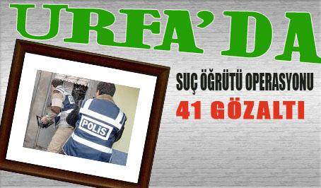 Urfa'da Büyük Operasyon 41 Gözaltı Var!