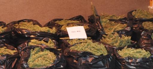 Uyuşturucu tacirlerine darbe; 361 kilo esrar ele geçirildi