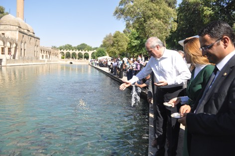 Numan Kurtulmuş Balıklıgöl'de VİDEO
