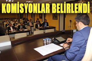 Eyyübiye Meclisi İlk toplantıda görev dağılımı yaptı