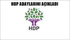 HDP Urfa'da Kaç Kişi Başvuruda Bulundu?