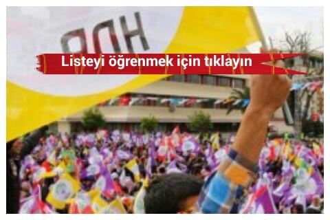 Şanlıurfa HDP'den kaç kişi aday adayı oldu?