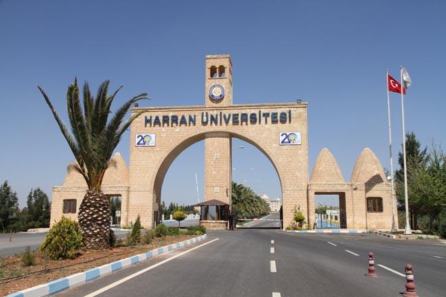Harran Üniversitesi özel bütçe ile hemşire alacak