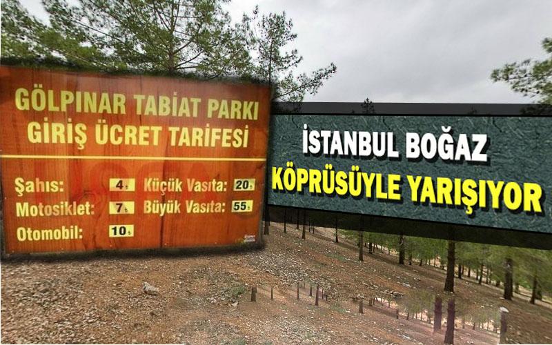 Şanlıurfa Atatürk Orman alanına giriş ateş bahasına!