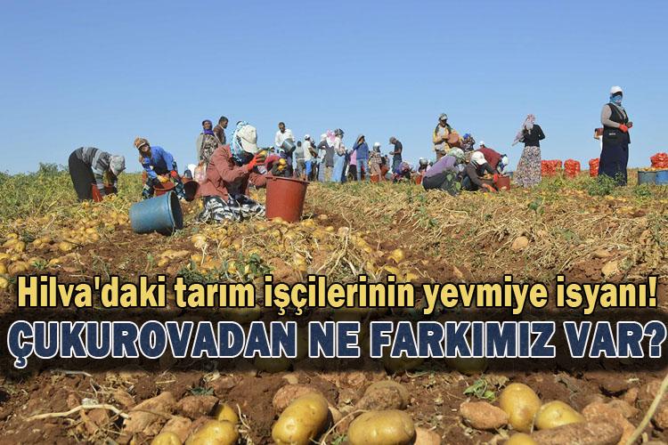 Hilva'daki tarım işçilerinin yevmiye isyanı!