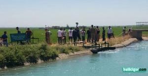 Akçakale'de sulama kanalında ceset bulundu
