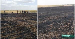 Yangın sezonu erken başladı, Urfa'da 300 dönüm arazi küle döndü