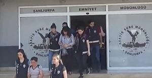 Şanlıurfa emniyetinden operasyon: 114 gözaltı