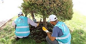 Adalet Bakanlığı Temiz Çevre Projesi İle Şanlıurfa Parkları Güzelleştirildi